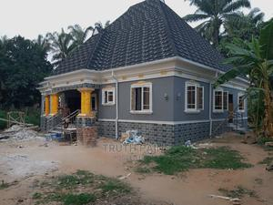 All Kinds Of Painting   Building & Trades Services for sale in Imo State, Owerri