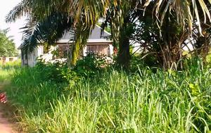 Plot of Land | Land & Plots For Sale for sale in Edo State, Benin City