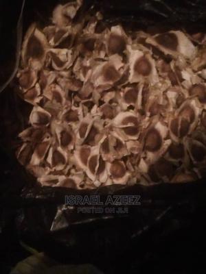 Moringa Seed | Feeds, Supplements & Seeds for sale in Kwara State, Ifelodun-Kwara