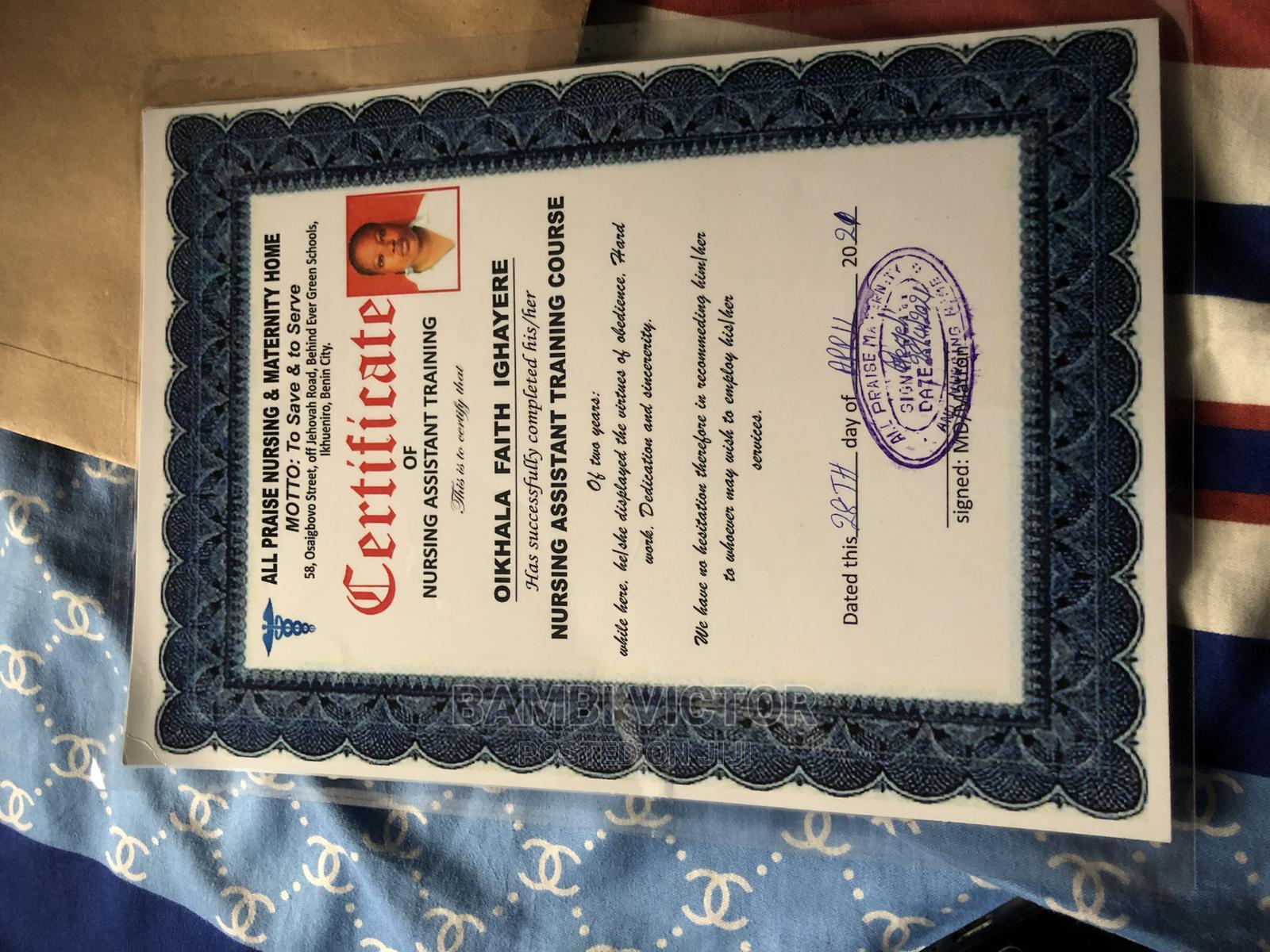 Healthcare Nursing CV