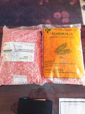 Improved Maize Seed Variety | Feeds, Supplements & Seeds for sale in Yobe State, Damaturu