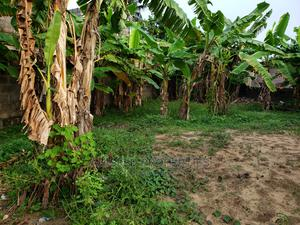 Land for Sale   Land & Plots For Sale for sale in Badagry, Badagry / Badagry