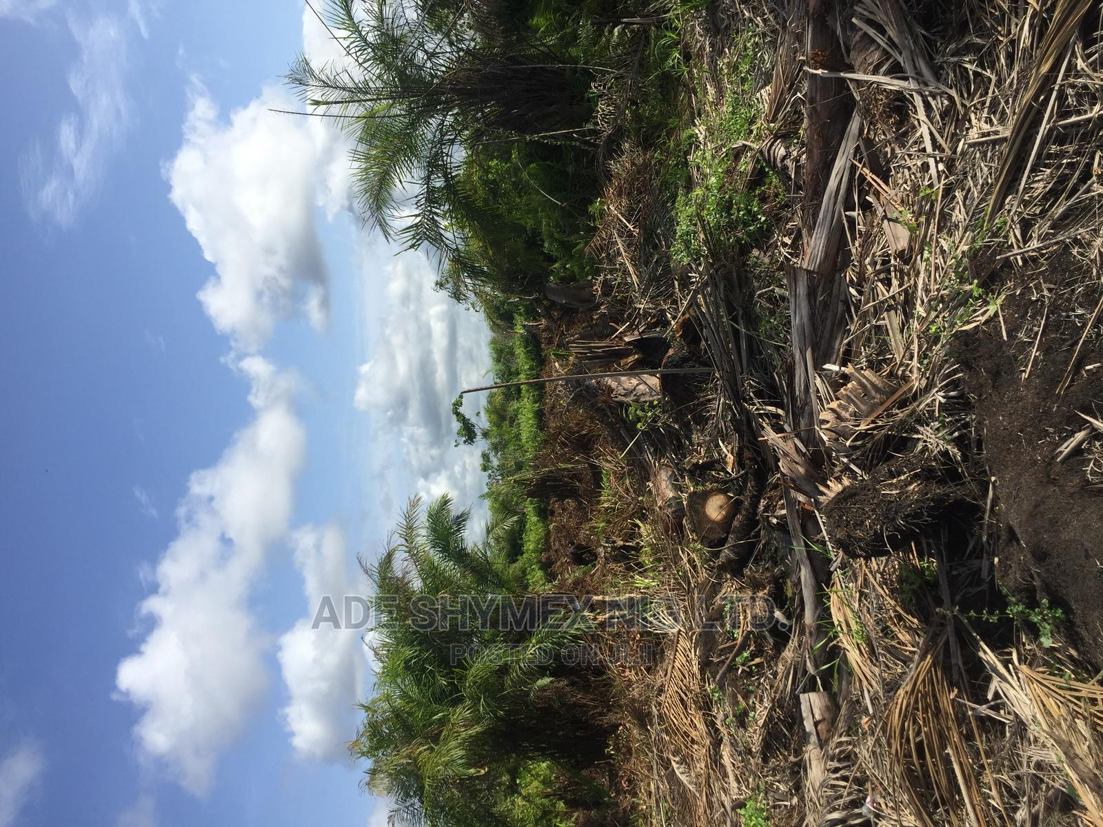 Plot of Land for Sale at Magbon via Agbara   Land & Plots For Sale for sale in Badagry, Lagos State, Nigeria