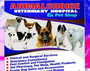 Well Experienced and Competent Veterinary Services | Pet Services for sale in Lagos State, Alimosho