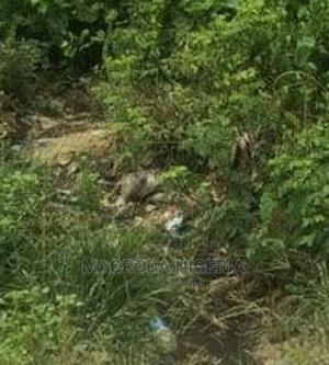 Half Plot of Land for Sale Inside Mini Estate in Iju Ishaga | Land & Plots For Sale for sale in Lagos State, Ifako-Ijaiye