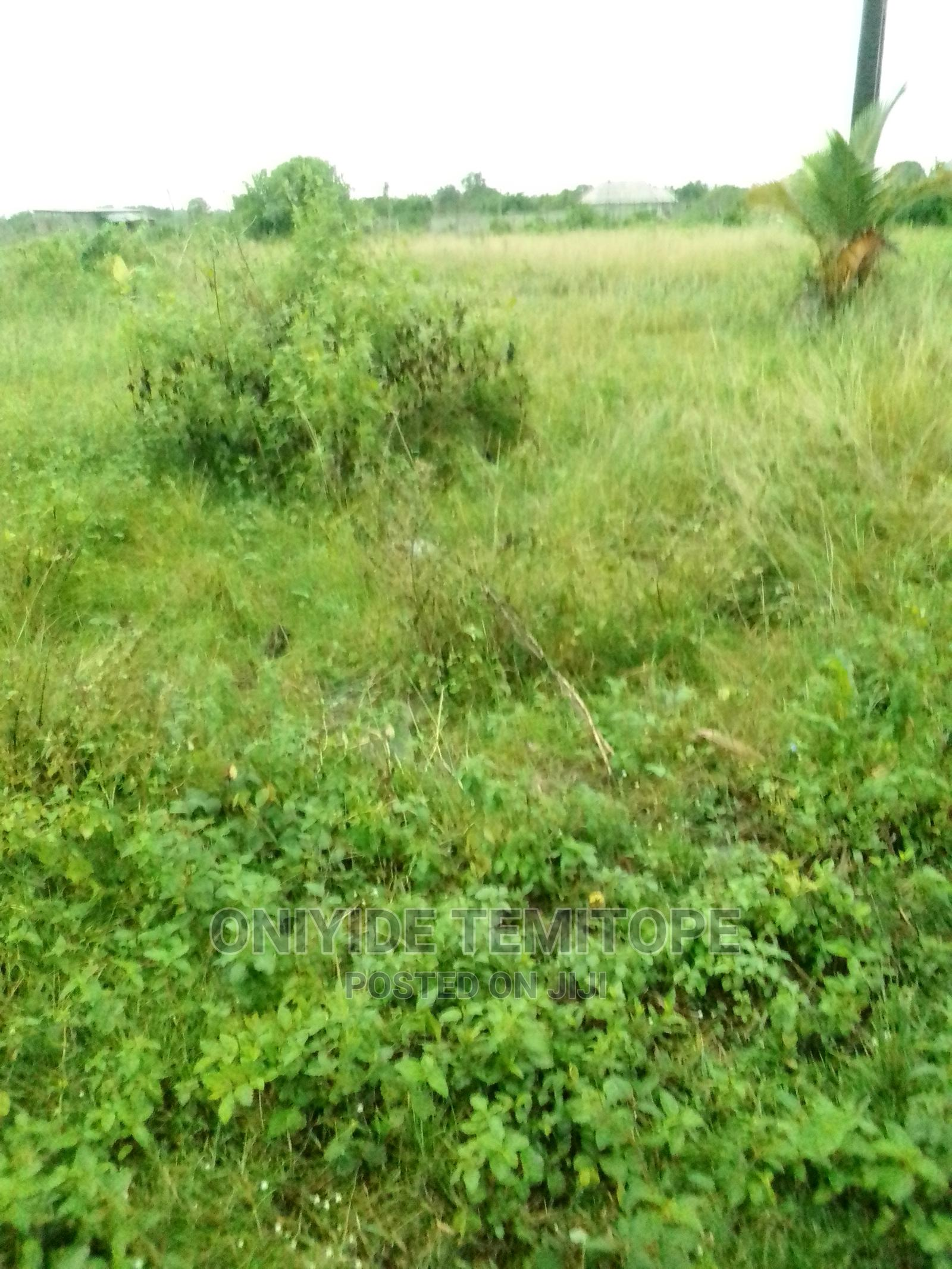 Land for Sale at Cheaper Price, Purchase Yours Today | Land & Plots For Sale for sale in Badagry / Badagry, Badagry, Nigeria
