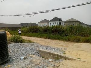 Certificate of Occupancy | Land & Plots For Sale for sale in Ogudu, Ogudu-Orioke