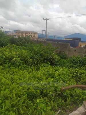 Commercial Land for Sale | Commercial Property For Sale for sale in Lagos State, Amuwo-Odofin