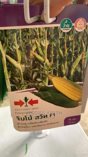 Jumbo Sweet F1 Sweet Corn Seed (Garden Pack) | Feeds, Supplements & Seeds for sale in Lagos State, Ajah