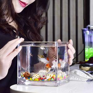 Mini Table Nature Aquarium   Fish for sale in Lagos State, Surulere