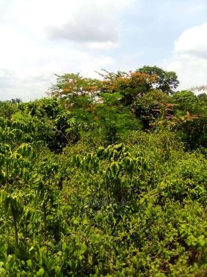 Residential Land for Sale | Land & Plots For Sale for sale in Oyo State, Oluyole