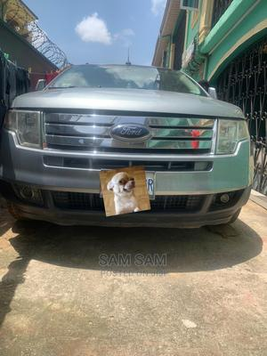 Ford Edge 2007 Silver | Cars for sale in Lagos State, Ojo