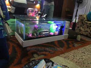 Center Table Aquariums | Fish for sale in Lagos State, Lekki