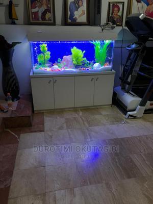 Full Aquarium | Fish for sale in Lagos State, Lekki
