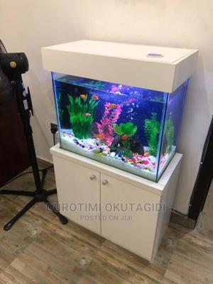 Simple Aquarium | Fish for sale in Lagos State, Lekki