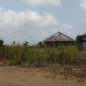 Plots and Acres of Lands at Avu, Owerri-Portharcourt Road   Land & Plots For Sale for sale in Imo State, Owerri