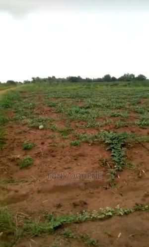Farmlands at Ihumbo/Oke Odan After Owode Along Idi-Iroko | Land & Plots For Sale for sale in Ogun State, Ado-Odo/Ota