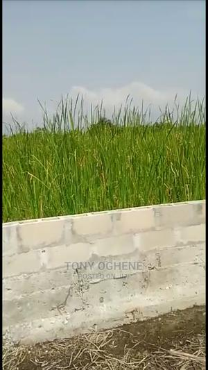 Plots of Land With C of O at Elemoro Before Eleko Junction | Land & Plots For Sale for sale in Lagos State, Ibeju