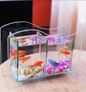 Beautiful Aquarium | Fish for sale in Lagos State, Surulere