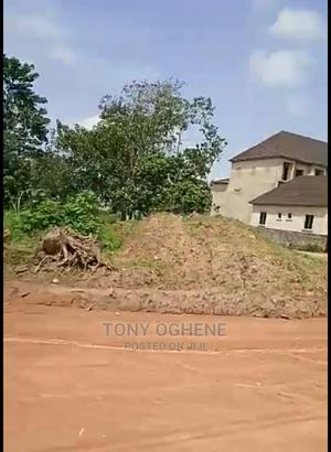 Plots and Acres of Lands With C of O at Agbara Ind Estate   Land & Plots For Sale for sale in Lagos State, Agbara-Igbesan