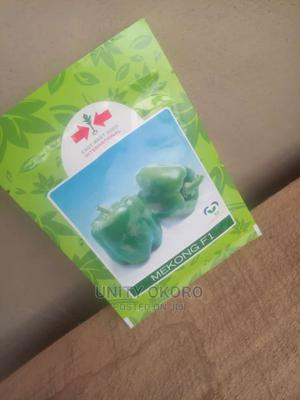 Green Pepper Seeds Available For Sale | Feeds, Supplements & Seeds for sale in Ogun State, Obafemi-Owode