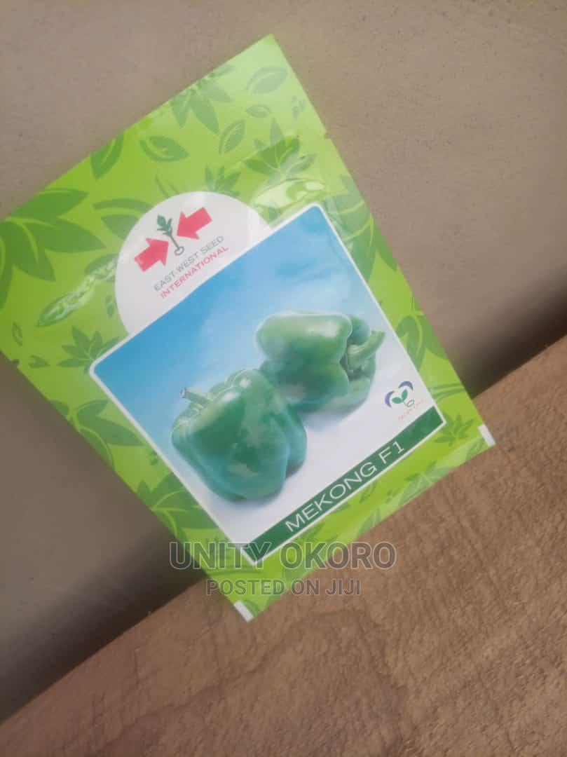 Green Pepper Seeds Available For Sale