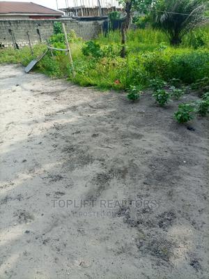 Prime Plot by the Lekki Expressway | Land & Plots for Rent for sale in Lekki, Igbo-efon