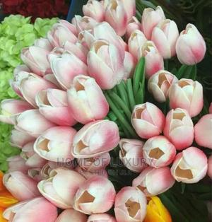 Beautiful Tulip Flower   Garden for sale in Abuja (FCT) State, Central Business Dis