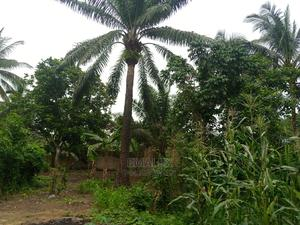 Land for Sale | Land & Plots For Sale for sale in Cross River State, Calabar