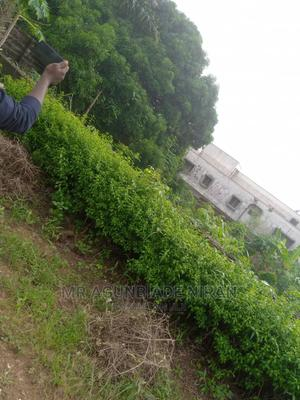 A Plot of Lands at Alakia Iyanagbala. 2m /1.5 / 1m   Land & Plots For Sale for sale in Ibadan, Alakia