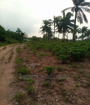 10 Acres of Land for Sale | Land & Plots For Sale for sale in Osun State, Iwo
