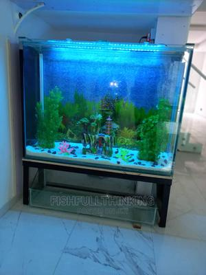 Large Aquariums | Fish for sale in Abuja (FCT) State, Asokoro