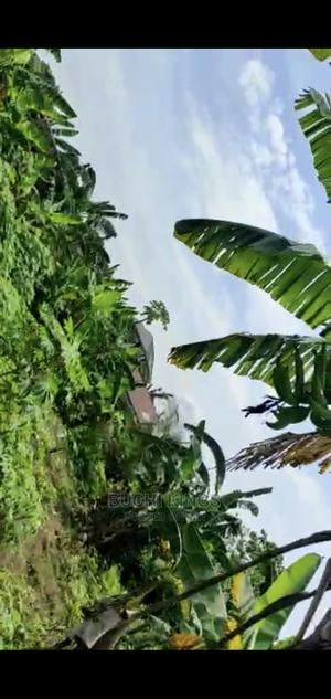 One Plot of Land | Land & Plots For Sale for sale in Abia State, Aba South