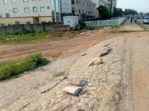 1800sqm Residential Land With Buffer Zone for Sale   Land & Plots For Sale for sale in Abuja (FCT) State, Wuye