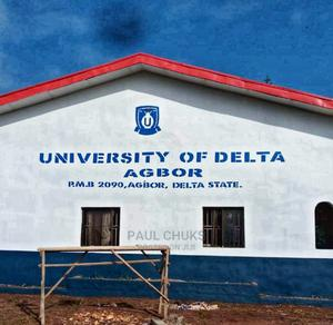 Land at Alihame Around Unidel Agbor Delta State | Land & Plots For Sale for sale in Delta State, Ika South