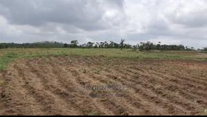Plain and Virgin Land in Dape, Life Camp | Land & Plots For Sale for sale in Abuja (FCT) State, Gwarinpa