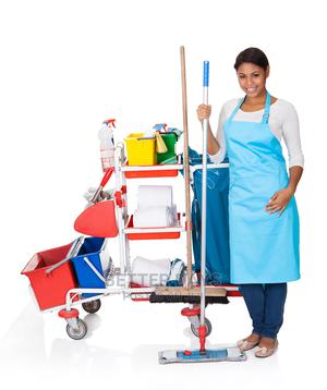 Best Cleaning Services | Cleaning Services for sale in Delta State, Sapele