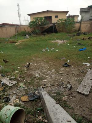 Full Plot of Land | Land & Plots For Sale for sale in Surulere, Ijesha