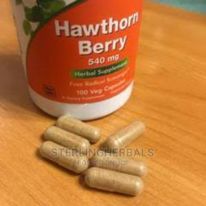 NOW Foods Hawthorn Berry 540 Mg, 100 Veg Capsules | Vitamins & Supplements for sale in Lagos State, Yaba