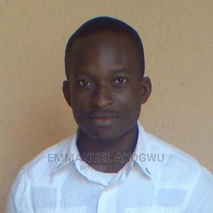 Web Designer/Web Developer/Software Developer | Computer & IT Services for sale in Lagos State, Ikeja