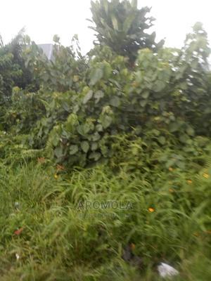 Plot of Land | Land & Plots For Sale for sale in Ojo, Iba / Ojo