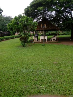 Grass Cutting Services | Garden for sale in Lagos State, Ikeja