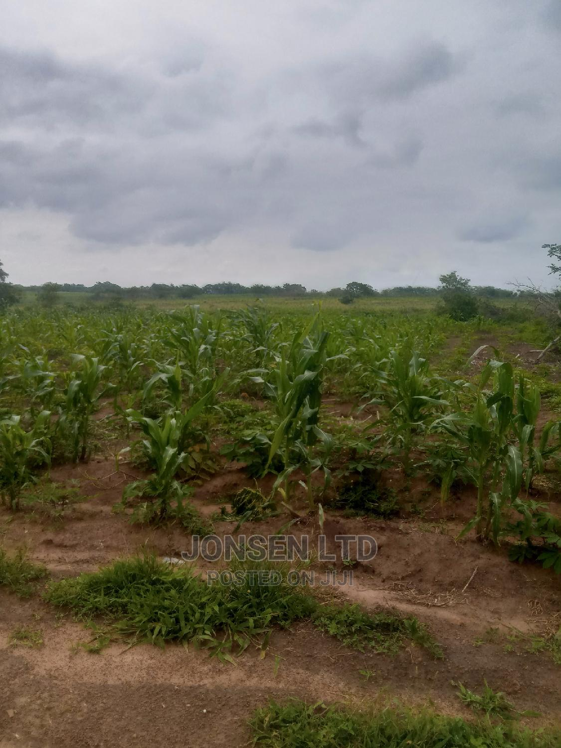 Plots of Land at Checking Point,Airport Ilorin