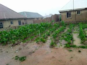 Farming Veterinary CV | Farming & Veterinary CVs for sale in Enugu State, Nkanu East