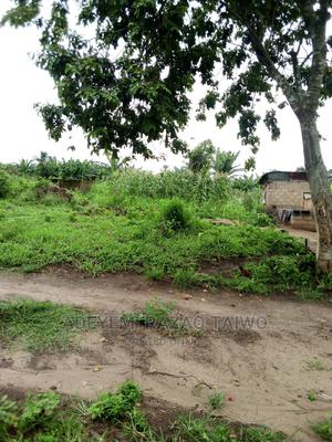Half Plot of Land | Land & Plots For Sale for sale in Ogun State, Ifo