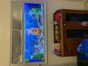 Wall Aquarium | Fish for sale in Lagos State, Ikeja