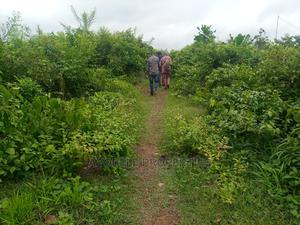 50acre's Land After Arulogun With Agreement and Survey, Ib. | Land & Plots For Sale for sale in Ibadan, Ibadan North West