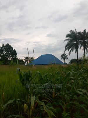 Virgin Land | Land & Plots For Sale for sale in Abia State, Osisioma Ngwa