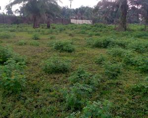 Standard 2 Plots of Land Situate Off Rukpokwu Igwuruta Road   Land & Plots For Sale for sale in Rivers State, Port-Harcourt