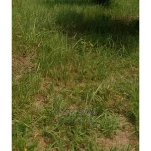 Receipt and Survey | Land & Plots For Sale for sale in Ogun State, Abeokuta South
